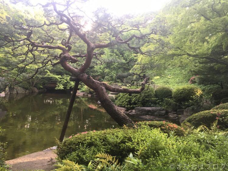 東京都庭園美術館 庭