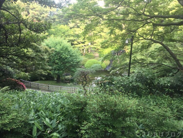 東京都庭園美術館 日本庭園